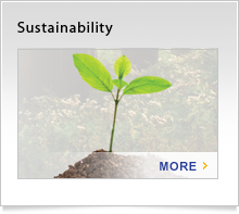 About Us - Sustainability