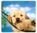 Fellowes® Recycled Optical Mouse Pad - Puppy in Hammock__5913901_PuppyHammock.png