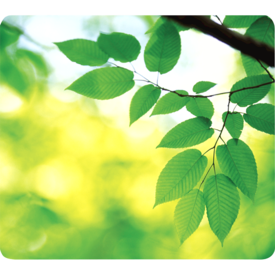 Fellowes® Recycled Optical Mouse Pad  - Leaves__5903801_Leaves.png