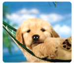 Fellowes&#174; Recycled Optical Mouse Pad - Puppy in Hammock__5913901_PuppyHammock.png