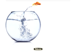 Leaping Goldfish Brite Mat Mouse Pad__BriteMat_LeapingGoldfish_58029_F.png