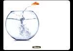 Brite Mat rettangolari - Pesce rosso__BriteMat_LeapingGoldfish_58029_F.png