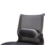 I-Spire Series™ Lumbar Cushion__ISpire_LumbarCushion_Hero_Left.png