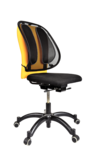 Coj&#237;n Lumbar Mesh Office Suites__MeshBackSupport_91913_RF.png