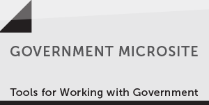 Government Microsite